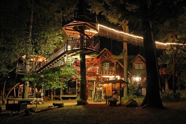 wood-house- (12)