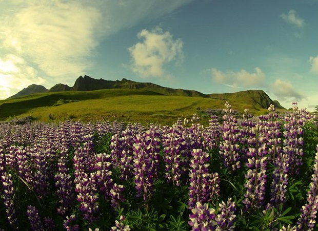 photos-of-beautiful-landscape-of-iceland (9)