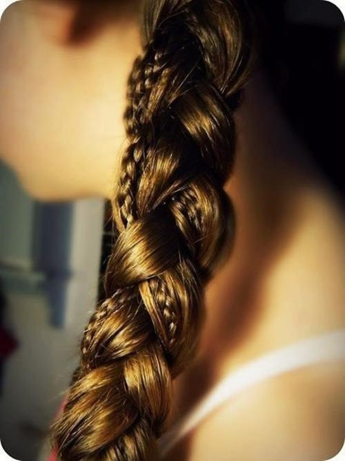 braided-hairstyles-for-girls-30-photos- (24)