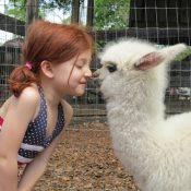 Cute Pictures Of Children and Animals (33 Photos)