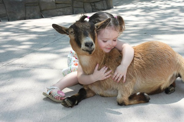 pictures-of-children-and-animals- (12)