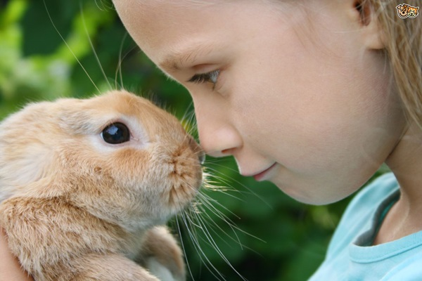 pictures-of-children-and-animals- (6)