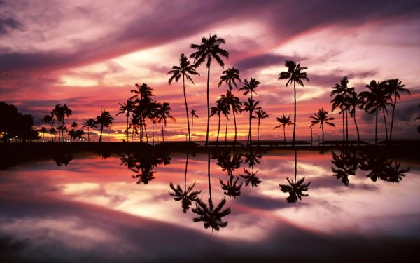 beach-sunset-wallpaper-17-photos- (13)
