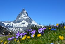 beautiful-switzerland-wallpaper-27-photos- (1)