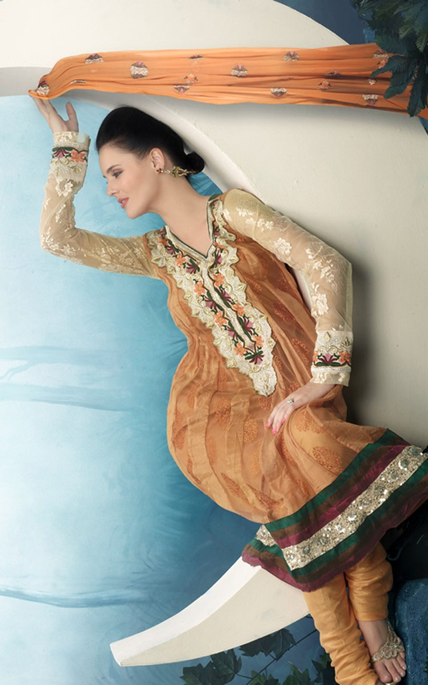 indian-anarkali-suits- (2)