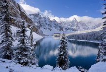 21-winter-photos- (14)