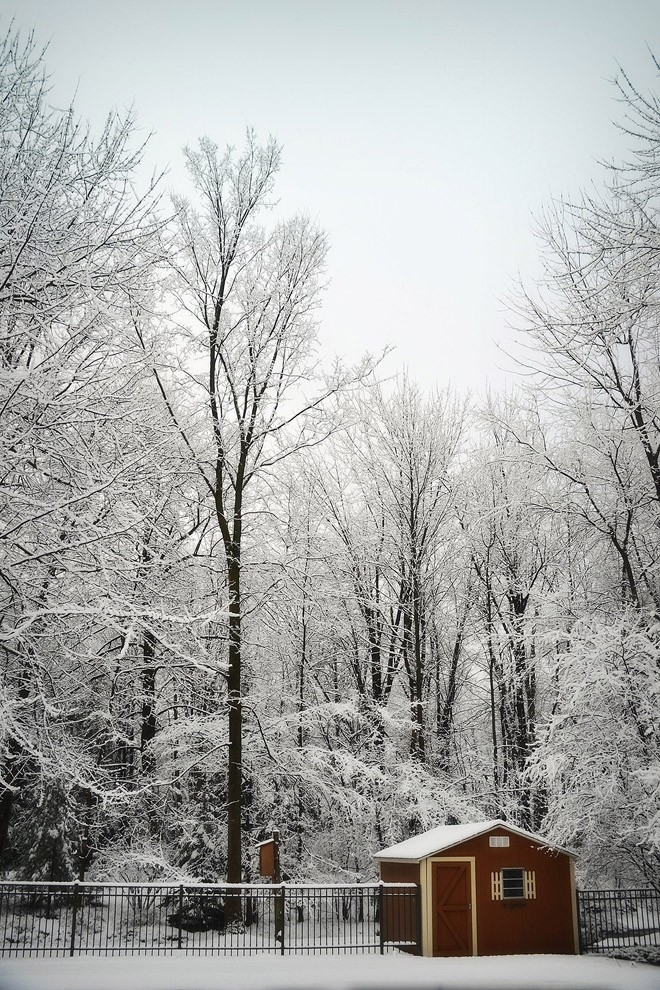 21-winter-photos- (2)