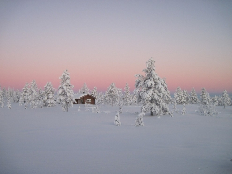 21-winter-photos- (4)