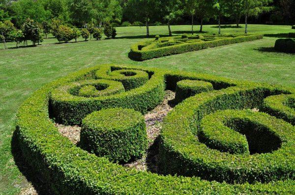 topiary-art- (5)