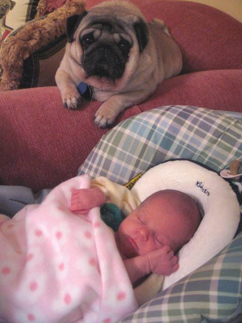 baby-with-dog- (29)